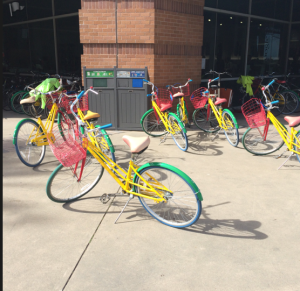 Google campus bikes for employee use to visit other buildings.
